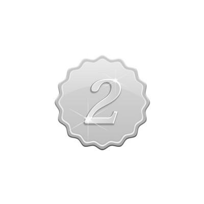 2の数字の入り、やわらかな角のあるシルバーメダルイラスト