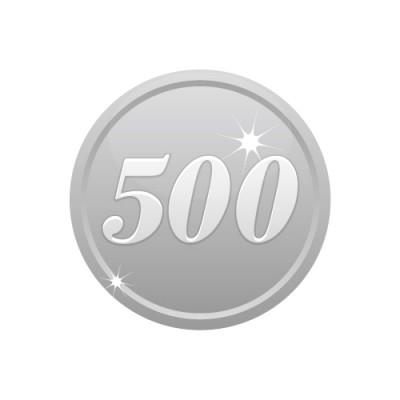 500の数字が入ったシルバーコインのイラスト