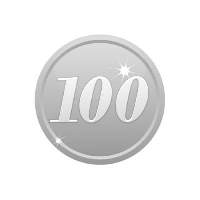 100の数字が入ったシルバーコインのイラスト