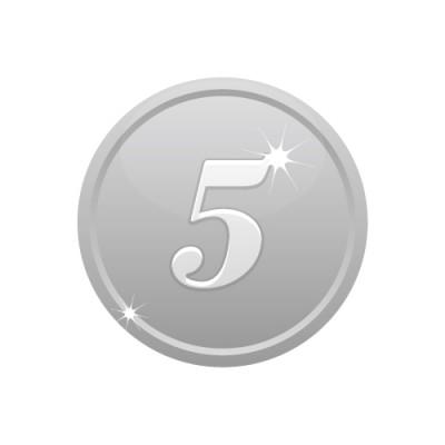 5の数字が入ったシルバーコインのイラスト