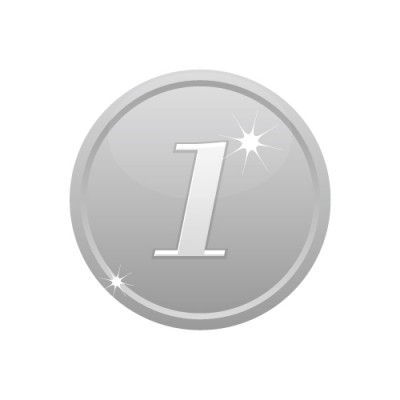 1の数字が入ったシルバーコインのイラスト